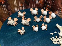 カニくん*Mサイズ*単体*ウノアシ貝 | 貝殻と革の可愛いインテリア雑貨ショップ*rikoyu・りこゆ