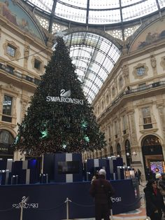 L'albero 2015 in Galleria