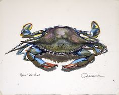 "Hatteras Island, NC  Blue ""She"" Crab  Oil pastels  1999"