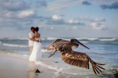 I may not be your first date, kiss or lovebut I want to be your last everything. Captured by Melissa Mercado | Melissa Mercado Photography | Playa del Carmen, Riviera Maya, Mexico