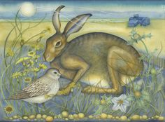 Hare à Blakeney Point (print)