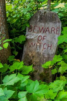 """""""Beware of Witches"""" located at a power plant in Michigan near the path to the Dead River falls."""