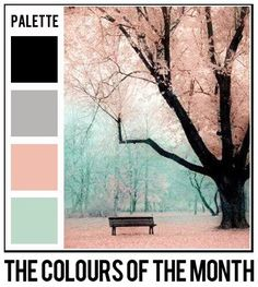 Black, grey, bliss pink and aqua. A pretty palette that has amazing decorating possibilities. Great bedroom colors using the black as an accent.