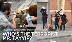 Taksim Gezi Parkı direnişinde gerçekler...