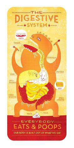 The Digestive System by Rachel Ignotofsky. $23.00, via Etsy.