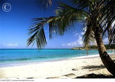 Friar's Bay, St. Marteen. [I have sat on this beach. And it was glorious!]