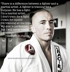 I don't train for a fight. I train for myself. I'm training all the time. My goal is perfection.