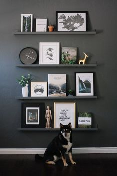 Hall Home Tour: Living Room Shelf Gallery Wall Minimalist, adventure themed shelf gallery wall Living Room Shelves, Living Room Decor, Bedroom Wall Decorations, Bedroom Wall Shelves, Shelf Ideas For Living Room, Hall Wall Decor, Shelf Decorations, Black Wall Decor, Accent Wall Decor