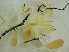 Shaved wood feathers. Learn how at end http://www.christinedebeer.ca/paste-and-cut-wooden-feathers