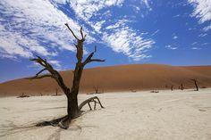Free Image on Pixabay - Sossusvlei, Deadvlei, Desert