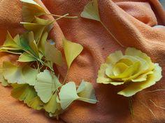 ginko leaves roses