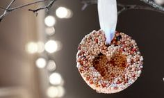 Saltwater Kids: thrifty gifts:: bird seed ornaments (for outdoor use) Christmas Ornament Crafts, Handmade Christmas Gifts, Homemade Christmas, Holiday Crafts, Christmas Crafts, Holiday Ideas, Christmas Ideas, Father Christmas, Christmas Goodies