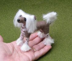 Needle Felted Dog / Chinese Crested featured in by GourmetFelted,