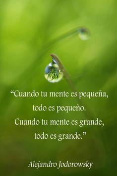 ... Cuando tu mente es pequeña, todo es pequeños. Cuando tu mente es grande, todo es grande. Alejandro Jodorowsky