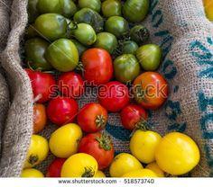 Organic Vegetables At A Farmers Market