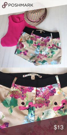 """Fun Shorts Chelsea & Violet floral should - front pockets, black waistband and belt loops.                                Measurements: W is 29"""", inseam is 2 1/2"""" and L is 10 1/2"""" - Material: 96% cotton and 4% spandex Chelsea & Violet Shorts"""