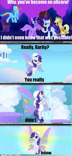 It's a shame that Sonic Rainboom was my first episode. Poor Rarity had my dislike for a while.