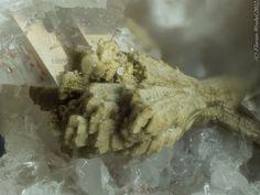 Pseudomorphose after allanit xx, Steinbruch Seula, Baveno, Piemont, Italy. Fov 2,0 mm. Copyright: Florian