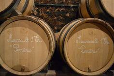 """Des terroirs d'exception """"en devenir""""... Leur élevage durera des mois encore avant de mettre le vin en bouteilles."""