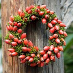 INSPIRACE: Šikovná žena sbírala šípky, ze kterých vykouzlila úžasné podzimní dekorace!   Prima Christmas Wreaths, Christmas Decorations, Holiday Decor, Feng Shui, Floral Wreath, Homemade, Inspiration, Finance, Cottage