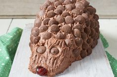 So delicious! Hedgehog Cake, Chocolate Buttons, Best Cake Recipes, Baking With Kids, Chocolate Decorations, Mini Cheesecakes, How To Double A Recipe, Novelty Cakes, Cake Ingredients