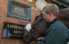 Long legacy: Ballabriggs follows in the footsteps of Red Rum and Amberleigh House