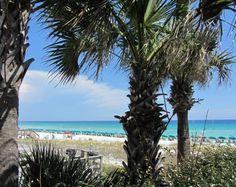 181 listings: Destin FL real estate, condos & homes for sale. Search Emerald Coast and homes online using established Destin realtors at Destin Real Estate, LLC Destin Florida, Florida Beaches, Condos For Sale, Beach Photos, Palms, Luxury Homes, Celebration, Coast, Real Estate
