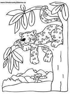 omalovánka Free Kids Coloring Pages, School Coloring Pages, Bear Coloring Pages, Disney Coloring Pages, Coloring Pages For Kids, Coloring Books, Art Drawings For Kids, Drawing For Kids, Jungle Theme Crafts