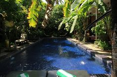 Hurry up, these offers only last 24 hours! I Siem Reap - Angkor Wat - Cambodia   www.petitvilla.com booking@petitvilla.com +855 888 575 389