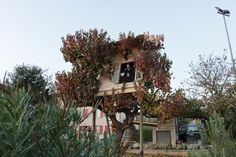 Vajol Treehouse. A small treehouse built as a shelter and a playhouse for kids. It integrates itself with the tree completely, and there are a lot of brunches going through it without compromising the liveability of the internal space. The main shape...