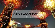 Wonder what you can do while you are on a layover in Singapore and if you should get to the city or wait at the airport till your next flight? Read our article to find out your options. What You Can Do, How To Find Out, Singapore Sling, Gardens By The Bay, Tropical Garden, Botanical Gardens, Marina Bay Sands, Cool Photos, Things To Do