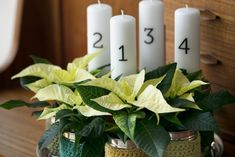 Istutusten ja nurmikon rajaus - Kotipuutarha Pillar Candles, Candles