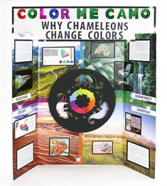 Chameleon Science Fair Poster