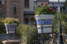 Arquitectura regionalista y botánica en el Parque de María Luísa de Sevilla