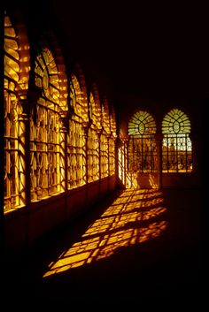 golden windows