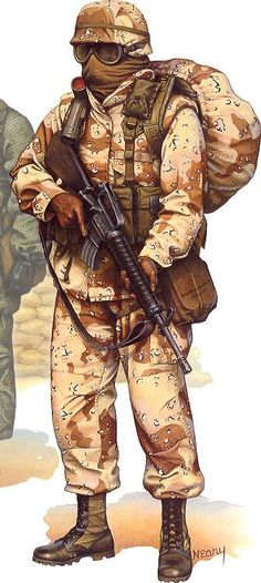Guerra  del golfo ,desierto equipo de tormenta