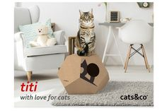 TITI cardboard house for cats | Indiegogo