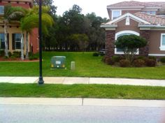 A beautifully fed spring St Augustine Lawn