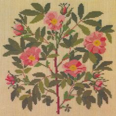 Gallery.ru / Фото #1 - Flowers and Berries in Cross Stitch - Mosca