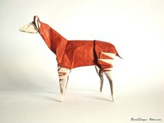 Okapi by David Llanque, via Flickr