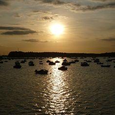 """Brownsea island, Poole harbour"" #Poole harbour #sunset #England"