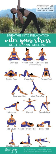 💮This yoga flow is perfect for relieving stress and anxiety with twists and focused poses. The flow is available in a free printable PDF. #yogapdf #stressrelief #yogasequence #yogaforstress Cow Face Pose, Weight Bearing Exercises, Puppy Pose, Yoga For Stress Relief, Bridge Pose, At Home Workouts, Gym Workouts, Benefits Of Exercise, Yoga Positions