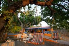 Iguana Lodge SJDS
