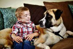 História de cão de três patas que ajudou menino a superar doença rara ganha livro