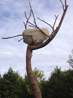 Giuseppe Penone - Versailles, été 2013 Water Art, Contemporary Sculpture, Land Art, Versailles, Installation Art, Driftwood, Sticks, Sculptures, Arts And Crafts