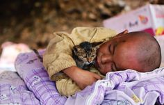 A child cuddling a cat rests under a shelter at the earthquake zone in Ludian county, Zhaotong, Yunnan province, China Amazing Animal Pictures, Cool Pictures, Beautiful Pictures, Fotojournalismus, Human Photography, Inspiring Photography, Voice Of America, Son Chat, Natural Disasters