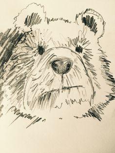 (Lieblingsbär) Bär #eintageinbaer