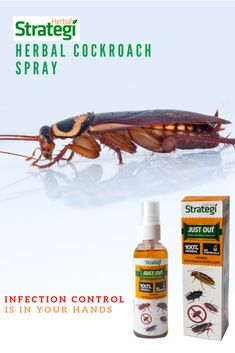 Our Herbal Cockroach Repellent Spray is natural and eco-friendly. Spraying it in the Kitchen and Bathroom areas for 10 days will repel cockroaches for Cockroach Repellent, Cedrus Deodara, Cockroach Control, Azadirachta Indica, Infection Control, Herbal Extracts, Natural Oils, Herbalism, Hands