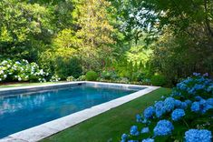 All you could think of all winter and spring was that beautiful swimming pool you have in your backyard. You can't wait to jump in as soon as it's warm Backyard Pool Designs, Swimming Pools Backyard, Swimming Pool Designs, Lap Pools, Indoor Pools, Pool Decks, Hampton Pool, Landscaping Around Pool, Landscaping Ideas