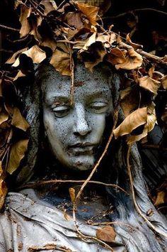 (via Autumnal Equinox | Hello Autumn!)
